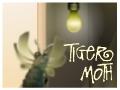 Jeu Tiger Moth